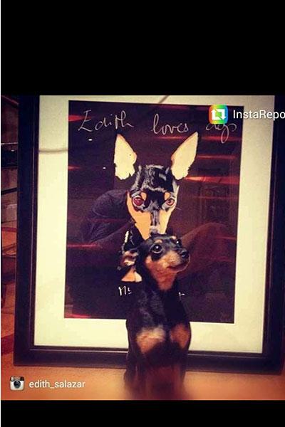 Black perro Edith Salazar