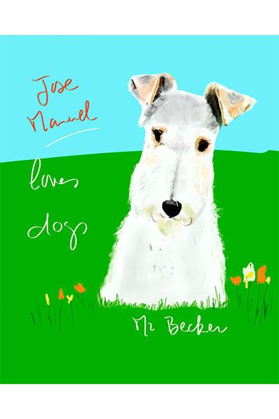 retrato perro fox terrier