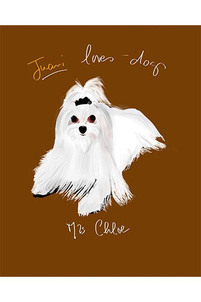 retrato de perro personalizado por Dani Wilde bichón Maltes pelo largo