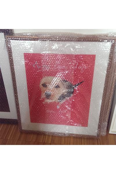 retrato perro enmarcado